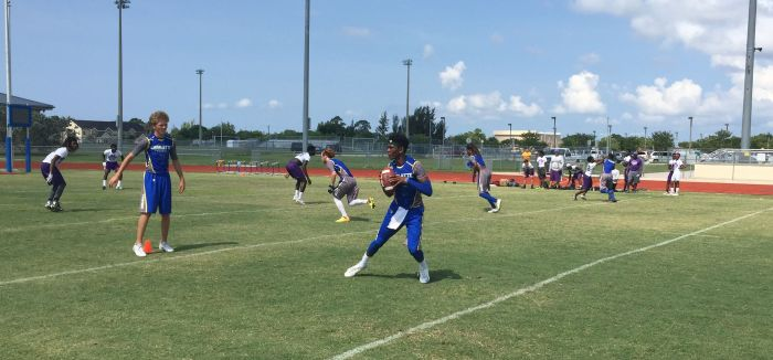 Quarterback Dee Hicks drops back for a pass during the Tarpons' 7-on-7 drills Tuesday at Charlotte High School.  Sun photo by Bryan Levine